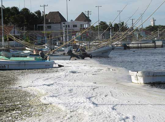 sea foam around boats