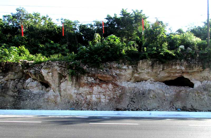 Roadcut near Chichén Itzá